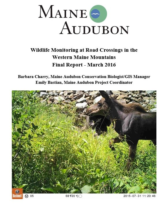 Wildlife Monitoring at Road Crossings in the Western Maine MountainsFinal Report