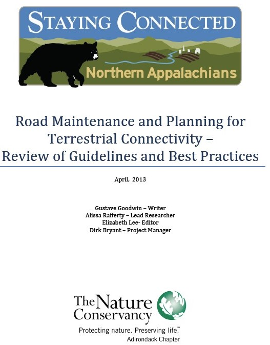 Road Maintenance and Planning for Terrestrial Connectivity – Review of Guidelines and Best Practices