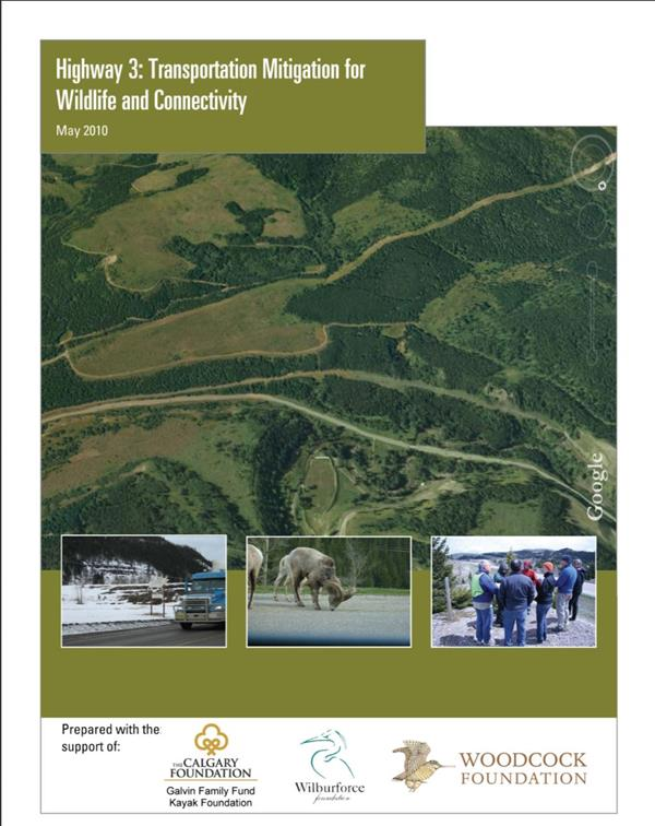 Highway 3: Transportation Mitigation for Wildlife and Connectivity in the Crown of the Continent Ecosystem