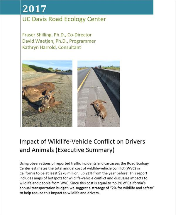 Impact Of Wildlife-Vehicle Conflict On Drivers And Animals (Executive Summary)