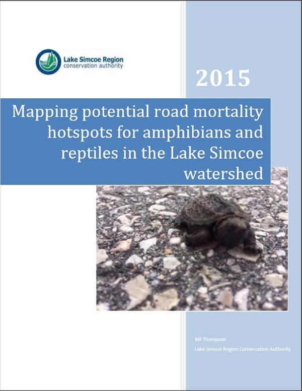 Mapping Potential Road Mortality Hotspots For Amphibians And Reptiles In The Lake Simcoe Watershed