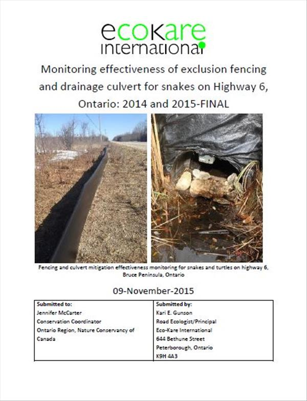 Monitoring effectiveness of exclusion fencing and drainage culvert for snakes on Highway 6