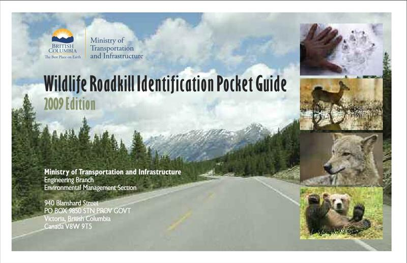 Wildlife Roadkill Identification Pocket Guide B.C. 2009