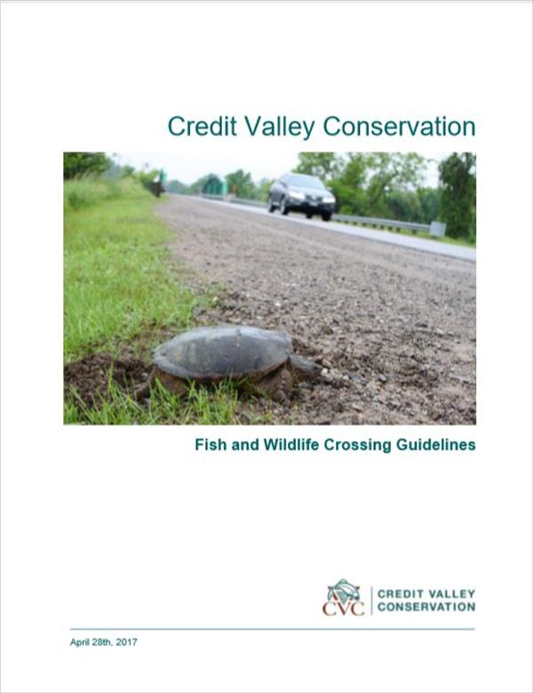 CVC Fish And Wildlife Crossing Guidelines